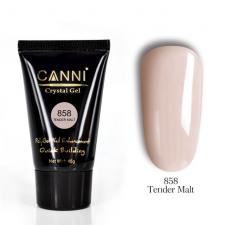 858 Canni Crystal Gel (Poly Gel) 45g